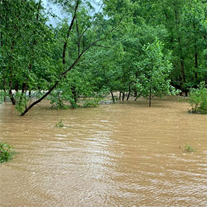 The Water Log: Local solutions to flooding and pollutant runoff