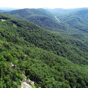 Nearly 1,000 acres protected, donated to Jones Gap State Park