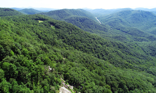 Nature Conservancy Transfers 955 Acres to Jones Gap State Park
