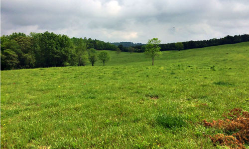 100 additional acres of historic Hester Dairy Farm are now permanently protected