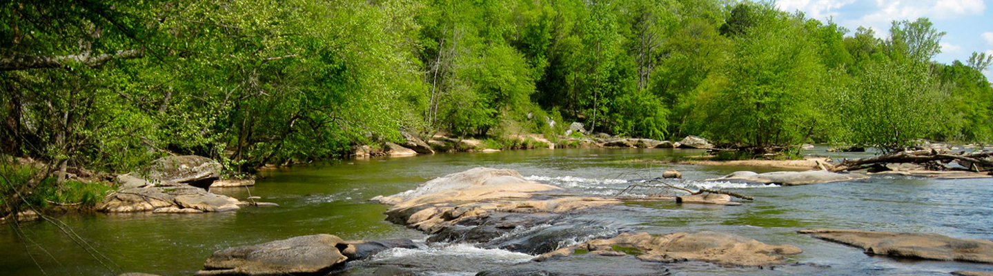 Public Meeting: Cleaning up Tyger River Basin Waterways