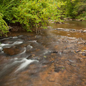 Clean Water 101: Intro to River Contaminants