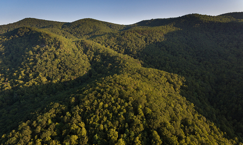 Greenville County adopts conservation trust fund to protect threatened resources