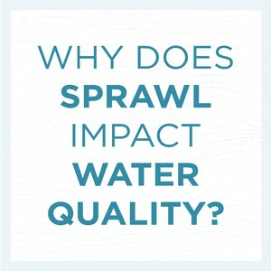Why does sprawl impact water quality?
