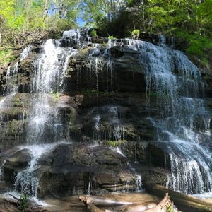 Waterfalls and Wildflowers: 5 great Upstate hikes to take in the sights and sounds of spring